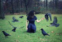 El encanto del cuervo