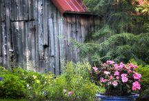 Barns / by Kathy Leonard