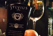 Sylvius Gin at Granikal / Sylvius Gin at Granikal