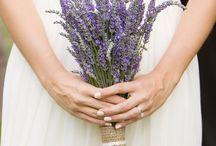 Lavender Love / by TRAUbar ~ Sabine John