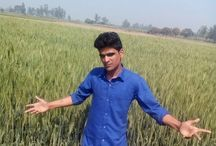 Yashpal Singh haldiya