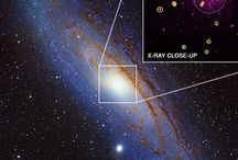 evrenin yıldızı