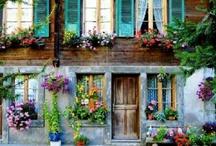 Beautyful color