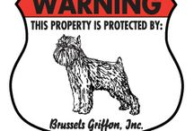 Brussels Griffon Signs and Pictures / Warning and Caution Brussels Griffon Signs. https://www.signswithanattitude.com/brussels-griffon-signs.html