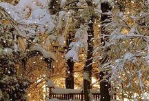 Snow Days / by Linda T