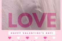 Valentines Day at Top Horse Outlet / All about love and horses <3 <3 <3