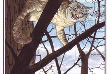 Alice in W:Art/Nick Hewetson / Alice in wonderland (illustrator)