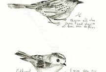 0.2_птички / птицы все от сов до орлов от синичек до аистов и т.д
