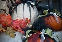 Fall, Halloween, Thanksgiving / by Tamara Aday