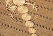 Crop circles.