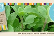 Ascents aromatherapy