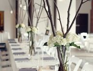 Centerpieces / Choose the best centerpiece for you wedding and make that day more than special.