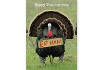 Celebrate Thanksgiving / Thanksgiving (the holiday sandwiched between Halloween and Christmas)  decor, crafts, recipes, and more