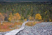 Finland - Pyhä-Luosto