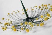 floristick