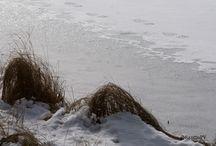 Klassarinkierros / Photography along this Nuuksio nature trek.