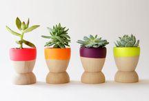 Botanicals / Garden ideas