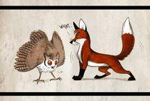 Culpeo-Fox