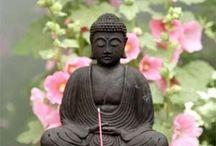 Zen ,Boedda
