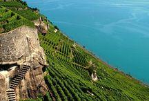 Lake Geneva ... / Setting ...
