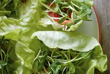 Other Veggie Recipes