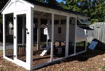 American Coop / The best chicken coop for the best price. We offer the same quality as our popular Carolina Coops, with a few differences to save you money. It comes it a kit or we can assemble it for you.
