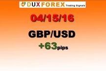 Daily Forex Profits Performance 04/15/16
