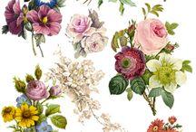 tatoo flores