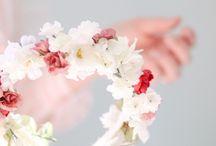 cown flower