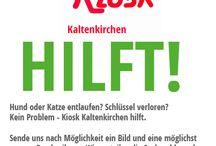 Kaltenkirchen / Was so los ist in Kaltenkirchen Schleswig Holstein