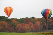 up and away in my balloon / by Debbie Ferguson
