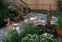Lovely Landscapes / The exquisite work of our talented Landscape Division.     From Designing & Planting to Walkways & Walls, we do it all! / by American Plant