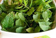 Herbes aromatique