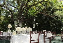 White Spring Wedding / Beautiful White Spring Wedding at Villa Woodbine in Coconut Grove, Florida. 