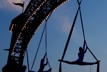 aerialists