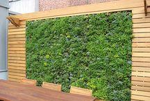 Vertikale Gärten, Mauern und kreative Ideen / #Vertikale Gärten, #Mauern und kreative Ideen für ihren #Garten. Ihr #GalaBau in #Jüchen www.ericclassen.de