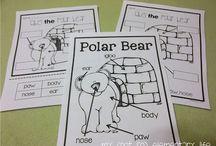 Polar activities / Animals