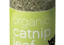 Eco-friendly pets / Love to find stuff for my furbabies that are green, organic, natural and such.  / by Connie (The Clever Nest)