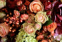 Wildflowers are always prettier! / Beautiful wildflower arrangements, gardens, etc.