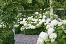 Hotel & Garden
