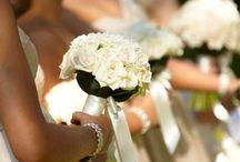 Ally Wedding