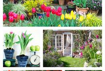 Spring Curb Appeal / Some fun ways to improve your home's curb appeal this spring!  Even if you don't plan on selling your home, you'll feel joy every time you come home!  :-)