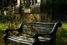 Beautiful... / by Olga Beloysova