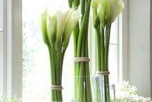 Kwiaty,bukiety