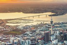 ✚ auckland ✚ / by Frances Ratner
