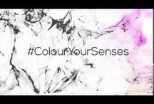 ColourYourSenses / Colour your senses with the vibrant and elegant jewels which are on your bucket list.  The senses with which you feel the presence of things around you, senses which allows you to share every moment of happiness, senses are those body parts that add colour to every  moment of your life journey. Colour your fingers with the sense of beauty, Colour your nose with the sense of culture, Colour your hands with the sense of power, Colour your ears with the sense of listening glorious chants.
