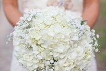 White and Blue Wedding Inspiration