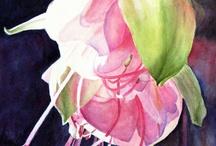 акварель цветы