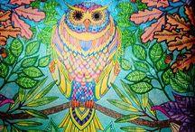 Clube da Arte / Desenhos, pinturas e arte