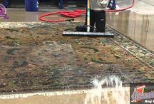 carpet Cleaning Viedo